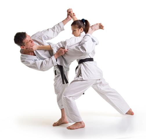Phoenix Martial Arts